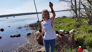 Рыбалка в пригороде г. Советский. Речка Гороховка, Выборгский залив