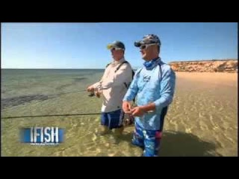 IFISH Whiting On Poppers!