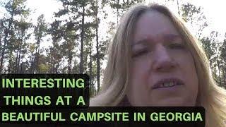 A Beautiful Campsite in Georgia