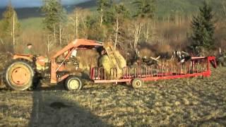 Dad's Cattle Feeder Invention