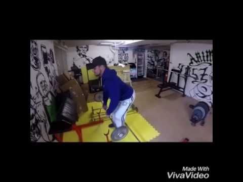 Animal Gym Basel Nino & Micho