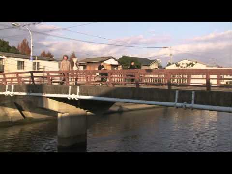 Japan: Fascinating Diversity (Takumi: Japan's Artisan Tradition)