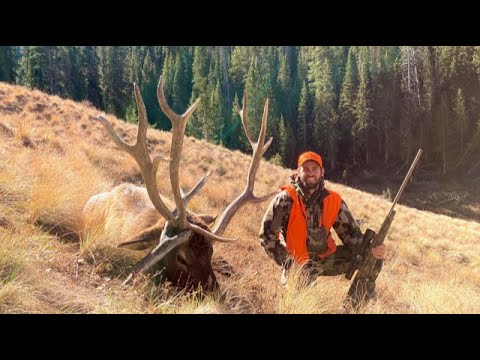 Gnarly Non-typical DIY Colorado Elk: Two bulls DOWN!! – Limitless 70
