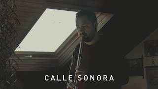 Calle Sonora | The Potato Monsters - Kitty Alone / Star of the County Down