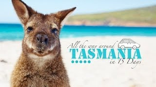 15 DAYS ROAD TRIP TASMANIA - BEST JOB IN THE WORLD TOUR 2014