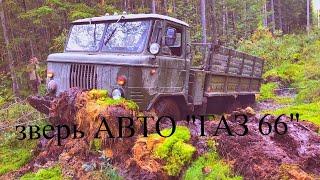 Бизнес грузоперевозки,  работа на себя, самосвал , доставка грузов , плюсы и минусы ,  газ 66