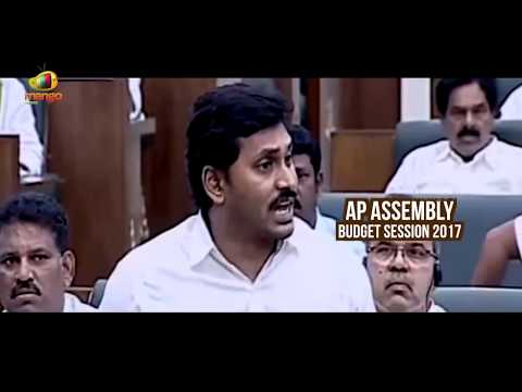 YS Jagan Fires On ETV Channel And Eenadu Organisation | AP Assembly Budget Session | Mango News
