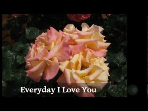 EVERYDAY I LOVE YOU  ( with Lyrics )  -  Boyzone