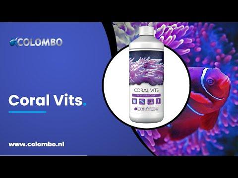 Colombo Marine Coral Vits