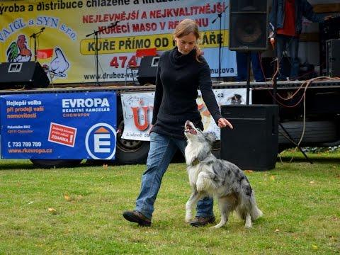 Nicoletta & Beauty - dogdancing