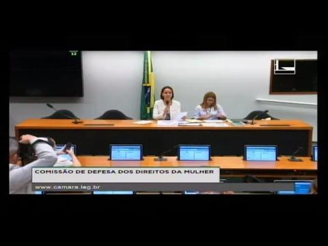 DEFESA DOS DIREITOS DA MULHER - Reunião Deliberativa - 09/08/2017 - 11:19