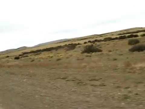 Recorriendo la Patagonia en auto