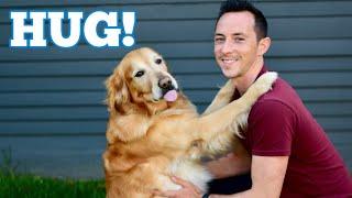 How to Train a Dog to HUG?