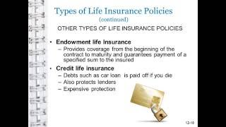 Endowment life Insurance, Credit life Insurance