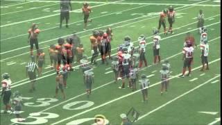 Titans vs. Tigers - August 29, 2015