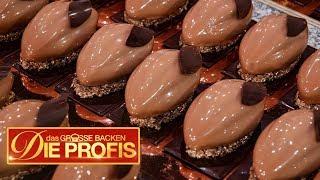 Ultimativer Schoko-Kuchen: Alles ist aus Schokolade | 2/2 | Das große Backen - Die Profis  | SAT.1