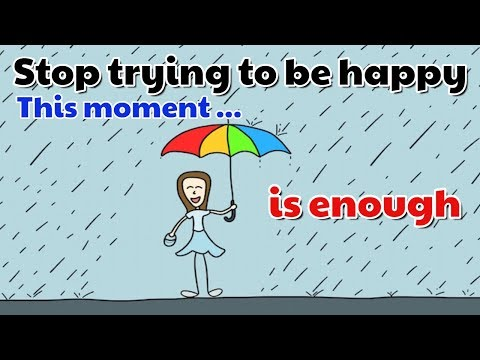 Sam Harris -The present moment becomes good enough, so you stop seeking happiness in the future.