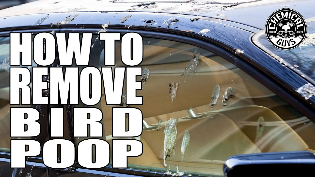 How To Remove Bird Poop - Chemical Guys Car Care