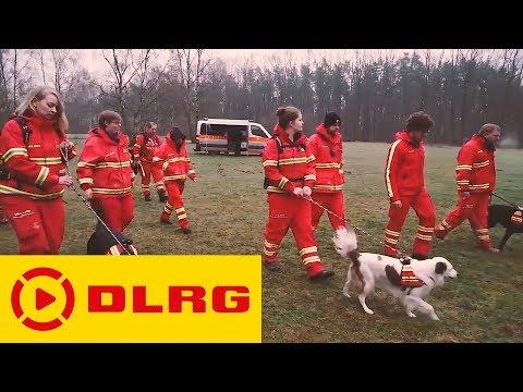 DLRG Rettungshunde: HUNDE.RETTEN.LEBEN
