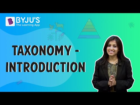 Taxonomy 01 - Introduction