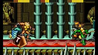 Battletoads 3 player Netplay arcade game