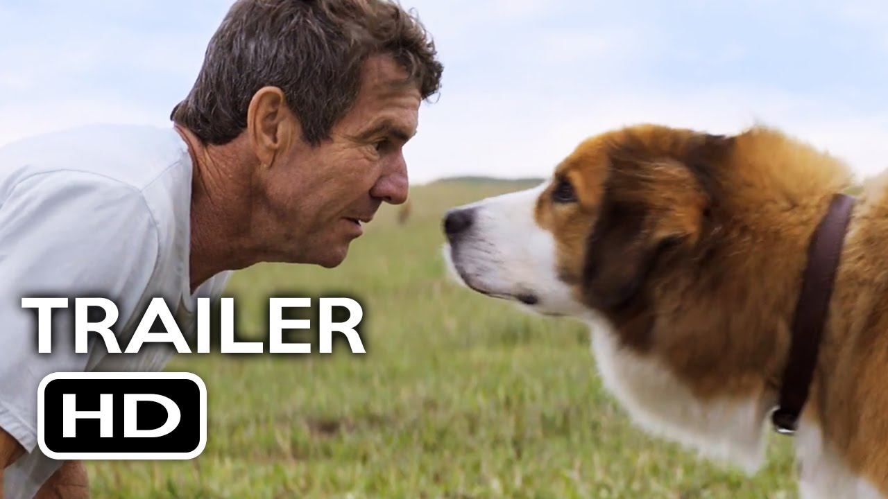 A Dog S Purpose Movie For Free