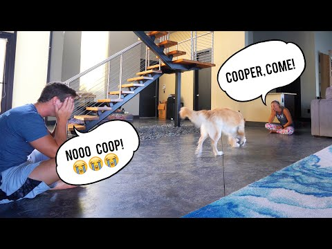 Testing Who Our Dog Loves More.. *SHOCKING*