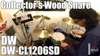 【Ikebe channel】dw Collector's Maple【#DS渋谷試奏動画】