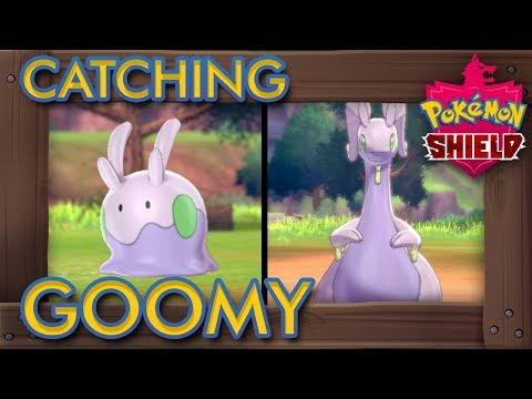Pokémon Sword & Shield - How To Catch Goomy (2% Rarity Pokémon)