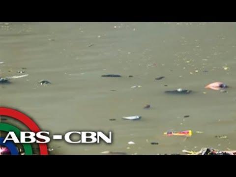 Bandila: Maruming ilog sa Laguna, nilinis