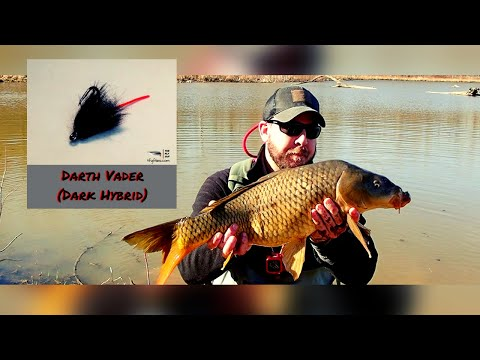 The Darth Vader Carp Fly And A Nice Spring Carp - March 2020 - The Fly Guy