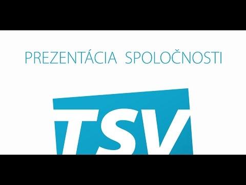 TSV GROUP