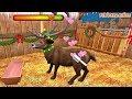 PetWorld 3D: Mi refugio animal   juego de cuidar animales para niños