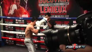 Roman Gonzalez vs Brian Viloria Full video - Brian Viloria complete workout video