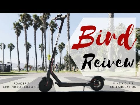 RIDE Bird Scooters FOR FREE - The UBER of Electric Scooters Review