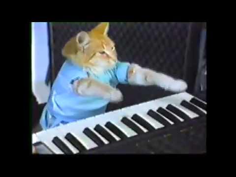Play Clay Bennett Off, Keyboard Cat!!! (Sonicsgate.org)