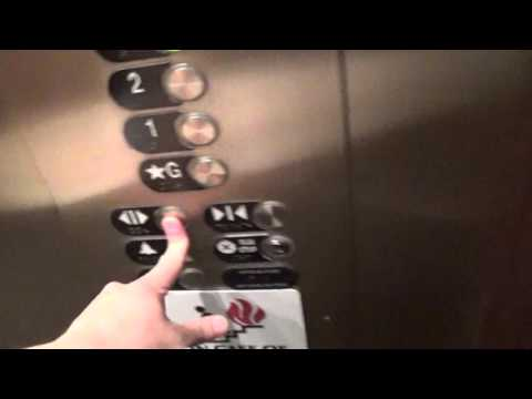 RUINED By Otis Elevator at Carnegie Museum of Natural History Pittsburgh, pa w/TJ