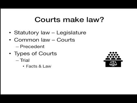 Introduction to the American Judicial System