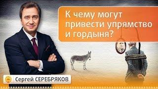 К чему могут привести упрямство и гордыня? Семинар Сергея Серебрякова