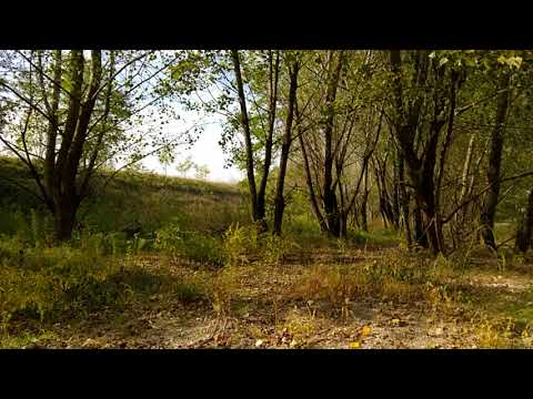 Relaxing Dry river - Duration 25 min - Earth's noise