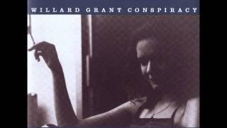 The Visitor - Willard Grant Conspiracy...