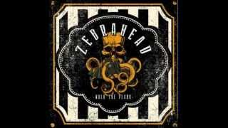 Zebrahead | Ali Tabatabaee on Walk the Plank album,