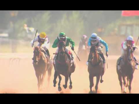 The Rise of China Horse Club- At the Races Feature 2017