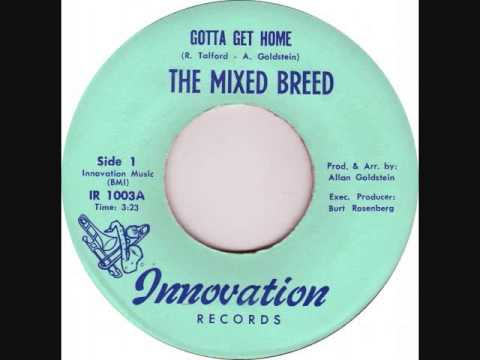 Mixed Breed  -  Gotta Get Home