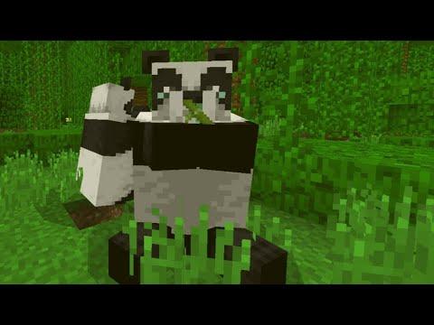 Neues Update Fur Minecraft Pe 1 8 0 8 Bandes Bambus Mehr Youtube