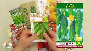 Выбор семян в 2018 году. Советы как купить лучшие семена. Ответы на вопросы