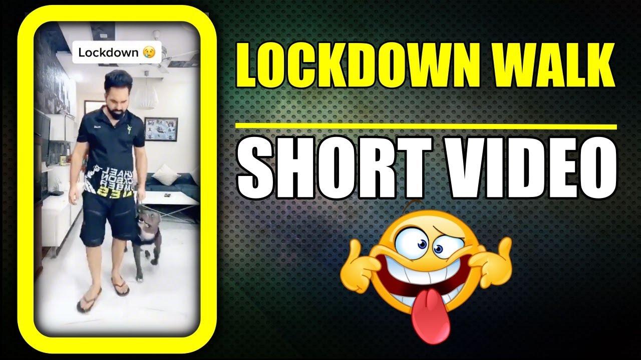 Dog Walk while Lockdown 😆 Funny Dog #shorts   Harpreet SDC