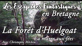 #06  escapades fantastiques en Bretagne - foret huelgoat