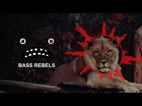 Netapy - Lion (Gaming Music No Copyright)