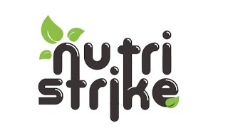 """Обучающий вебинар для партнеров компании Global Intellect Service. Тема : """" NutriStrike"""""""